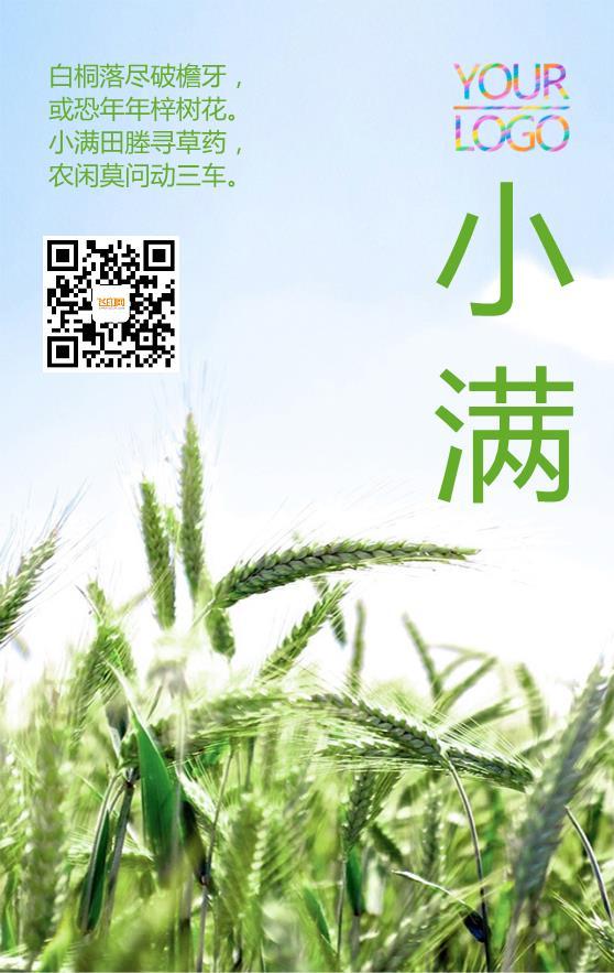 绿色实景丰收二十四节气小满海报模板下载